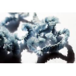 laine fantaisie oursonne bleue
